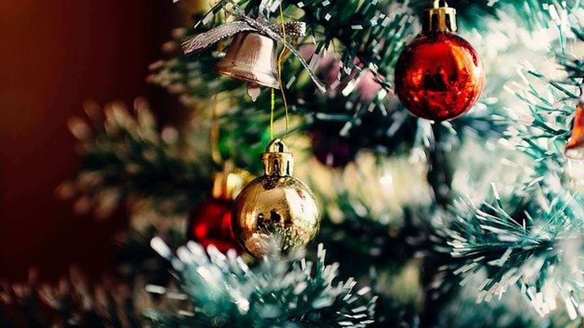 Be prepared to pay more this season for that Christmas tree - fresh cut or fake