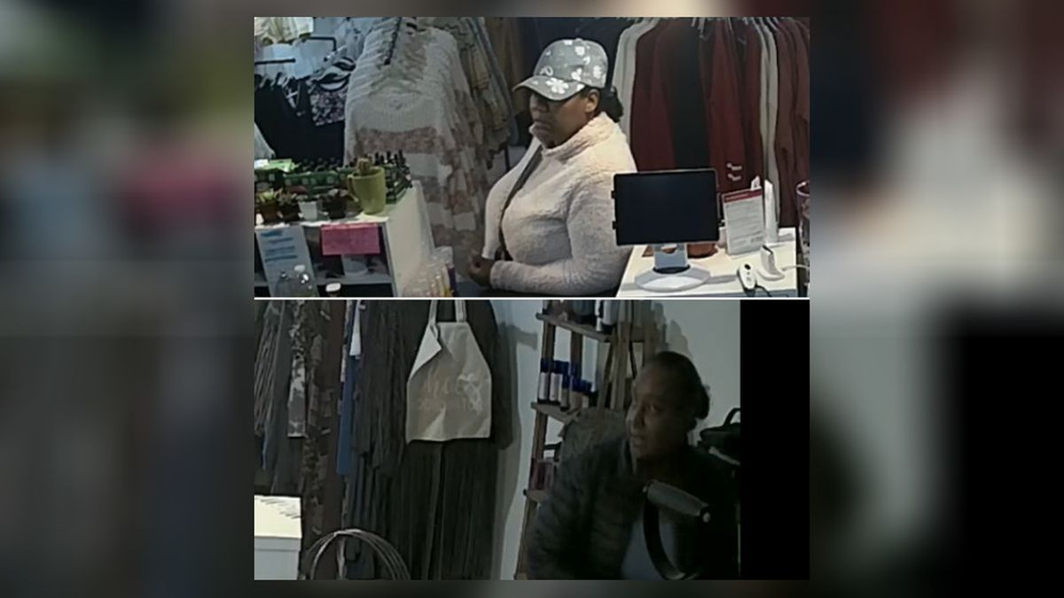 Can you ID these 2 people involved with a credit card theft?