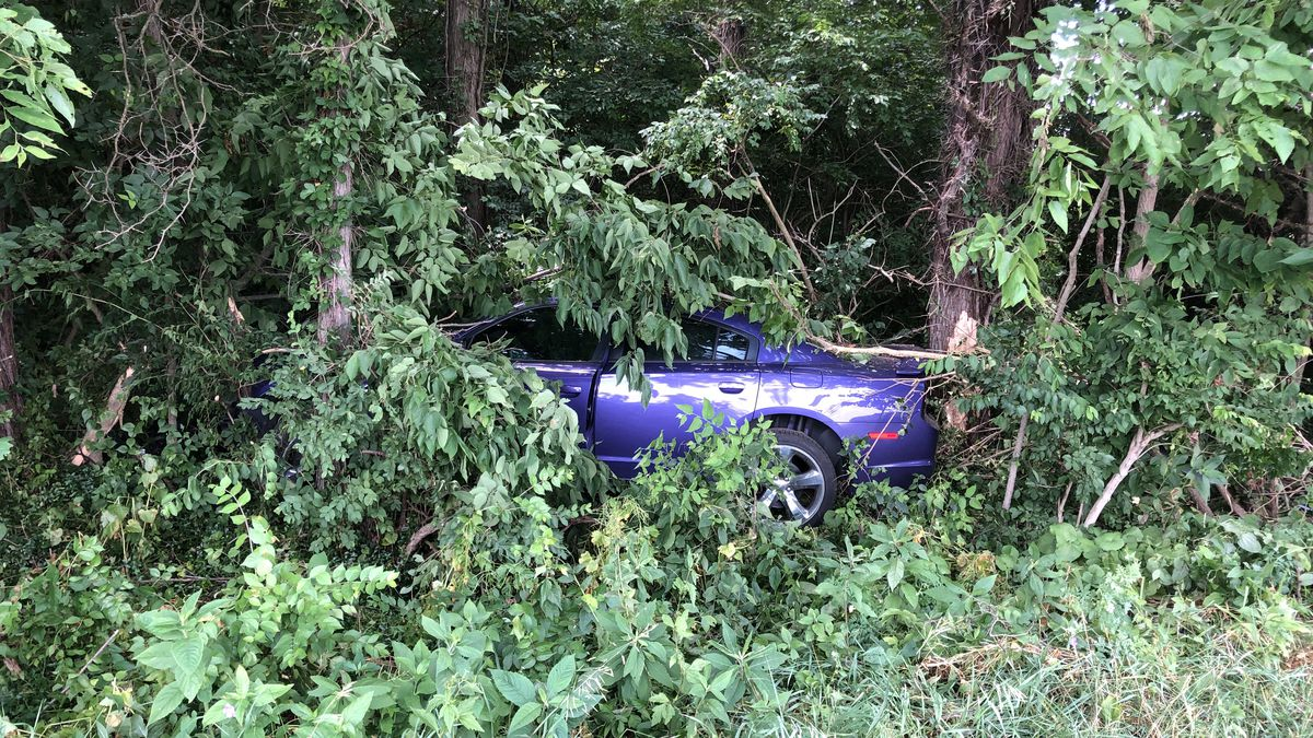Suspended attorney arrested after high-speed chase near Urbana